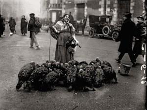 Libro Madrid. Retrato de una ciudad | La Librería (2020) | Vendedora de pavos | Alfonso (1925)