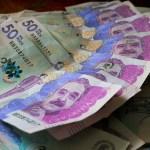 Programa de Apoyo para el Pago de la Prima de Servicios (PAP).