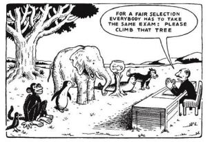 education system animal