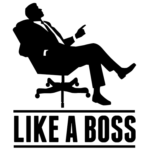CEO of our career