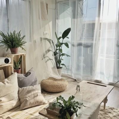 Lo-Fi House|Miss little sunshine|日光清新小居