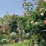 Anmagarden艾瑪花園