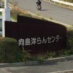 向島洋ランセンターで開催された『はらっぱマーケット』に行ってきました!