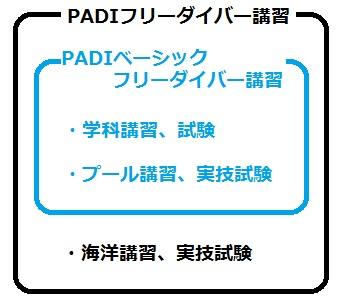 PADIフリーダイバーとPADIベーシックフリーダイバー説明