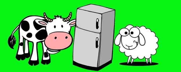cara menyimpan daging qurban di kulkas supaya tahan lama