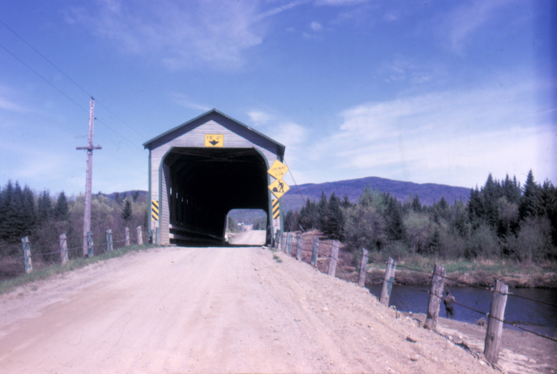 Un Petit Nouveau Dans La Section Des Disparus Le Pont