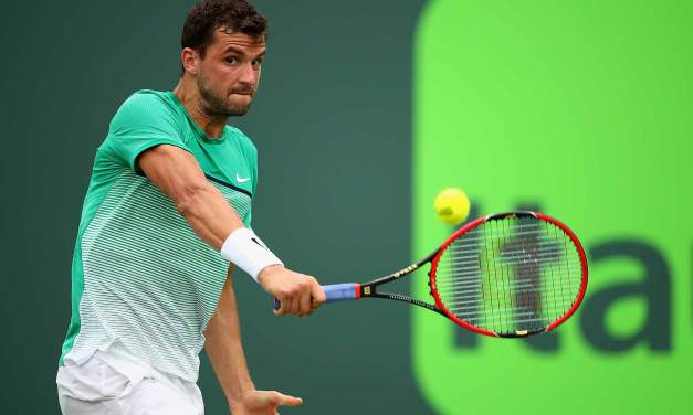 Ponturi Tenis Dimitrov – Istomin – Australian Open