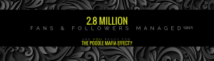 Social Media Results PR Marketing and Branding