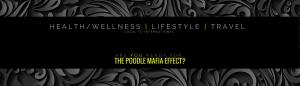 social media agency los angeles health wellness lifestyle tourism