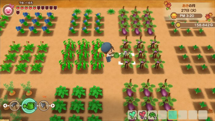 Harvest Moon: Friends of Mineral Town Remake