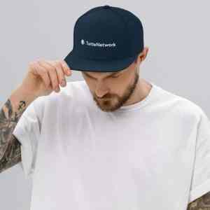 Turtle Network Full Logo Snapback Hat