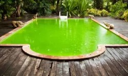How to Clean Green Pool Fast? – Easy Instructions