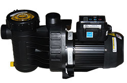 Speck A91 Pool Pump