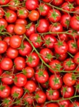 o-grafting-tomatoes-and-potatoes-facebook