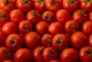 tomatoes-002