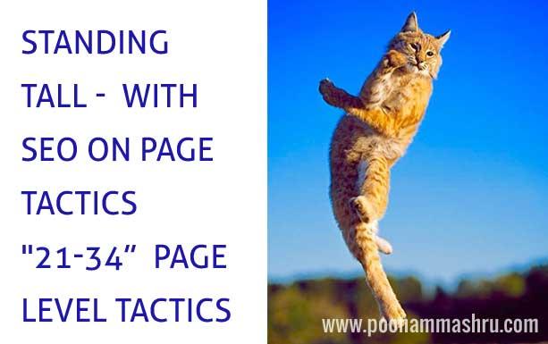 seo tactics for on page optimization poonam mashru