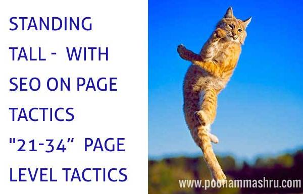 seo tactics for on page optimization poonam mashru