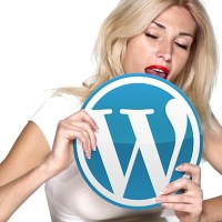 Even The World's Sexiest CEOs Love WordPress