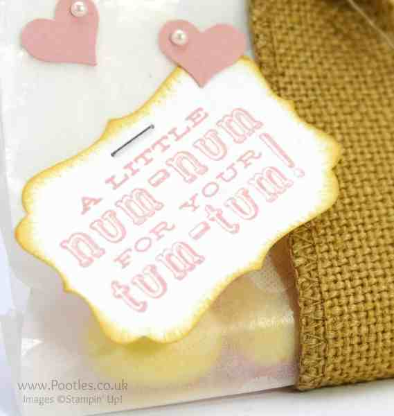 Stampin' up! Demonstrator Pootles - Sweetie Snack Pack Tutorial Blushing Bride So Saffron