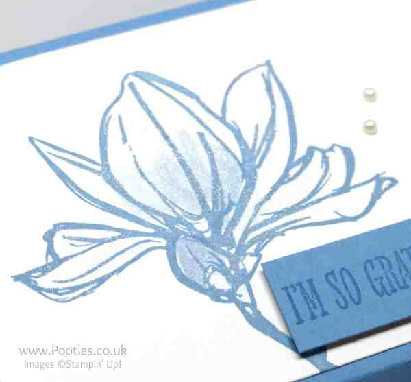Stampin' Up! Demonstrator Pootles - FFold Flat Box using Stampin' Up! Remarkable You Wink of Stella