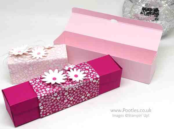 Stampin Up! Demonstrator Pootles - Slender box using Blossom Bunch Punch and DSP Open
