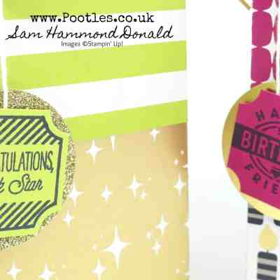 Broadway Bound Gift Bag and Hand Cut Crinkle