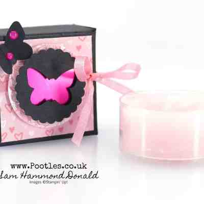 Beautiful Delicate Butterfly Punch Boxes for Pootlers Team Swaps