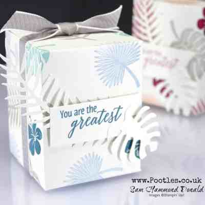 All Stars Tutorial Bundle Blog Hop – Tropical Chic with curious colours!