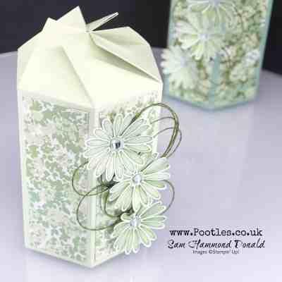 Twist N Close Garden Daisy Lane Box Tutorial