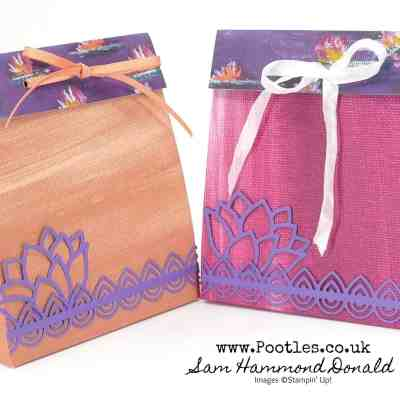 Springwatch 2020 #13 Lily Impressions Bag Tutorial