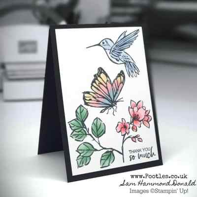 Pootlers Team Blog Hop – Beautiful Blends and a Touch of Ink