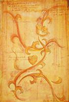 fiore-di-venere-tecnica-mista-su-legno-100x70-cm1