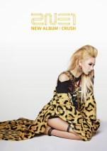2NE1 Crush Album (4)