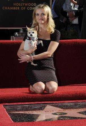 Reese_Witherspoon_Hollywood_Walk_of_Fame