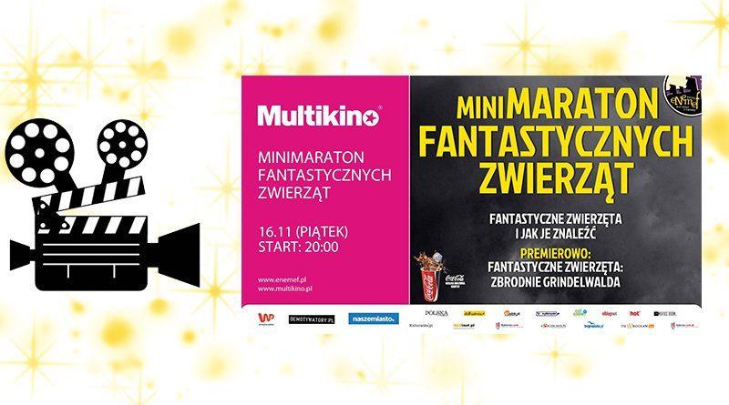 """Wygraj podwójną wejściówkę na ENEMEF: Minimaraton """"Fantastycznych Zwierząt"""" z premierą 16 listopada w Multikinie!"""
