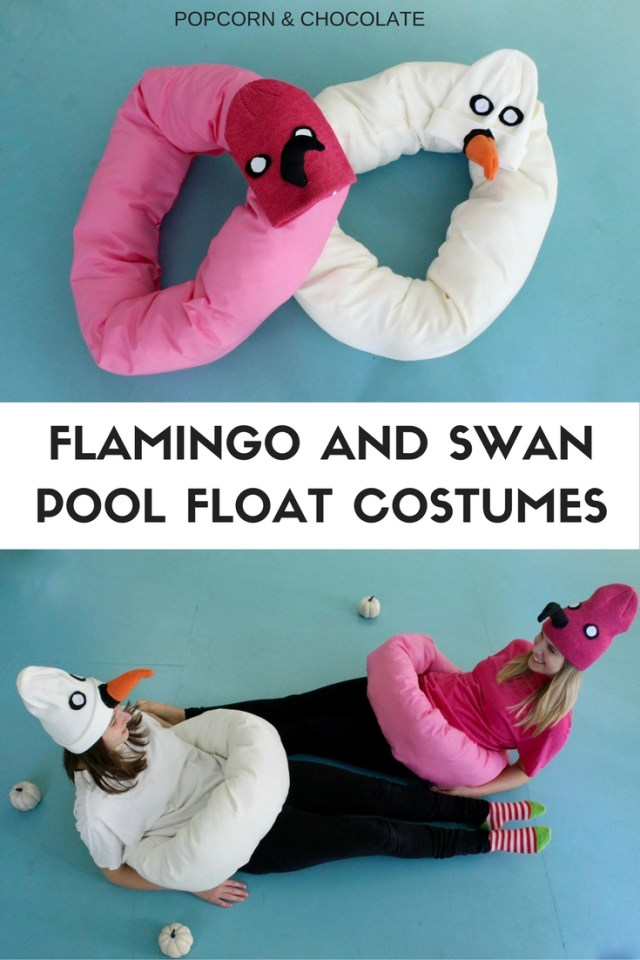 Flamingo and swan pool float costumes   Popcorn & Chocolate
