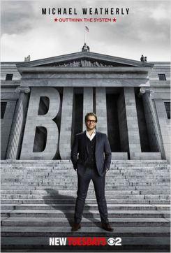 bull-s01-usa-popcornandgibberish-wordpress