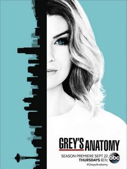 greys-anatomy-s13-abc-shonda-rhimes-2016-wordpress-popcornandgibberish