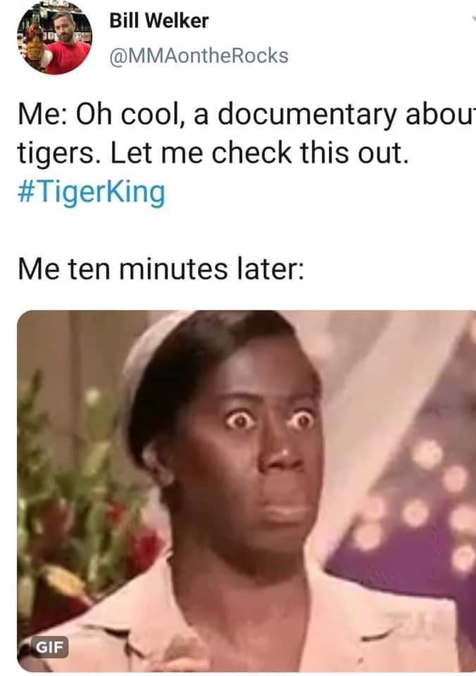 meme about tiger king netflix