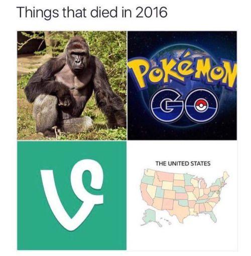 election 2020 memes pokemon