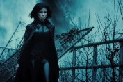 Underworld: Blood Wars, Screen Gems