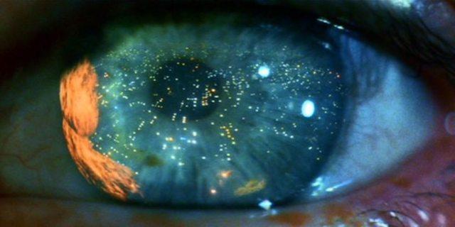 Blade Runner 2049, Warner Brothers Pictures