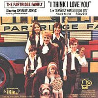 "The Partridge Family, ""I Think I Love You"""