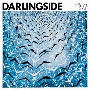 Darlingside-BirdsSay-Front