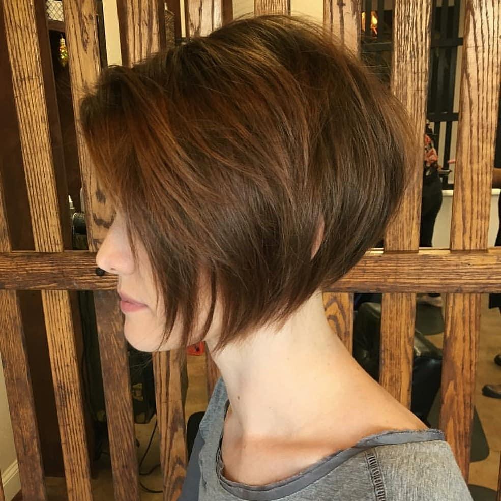 Dark Brown Hair Light Brown Tips