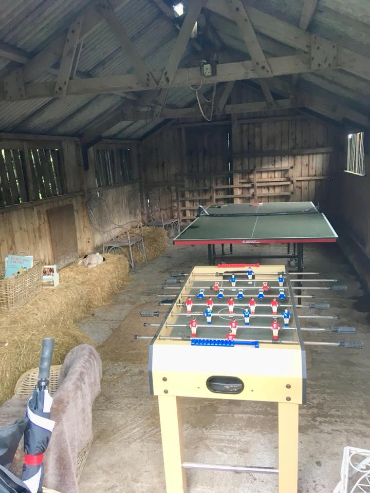The games den at the Dandelion hideaway