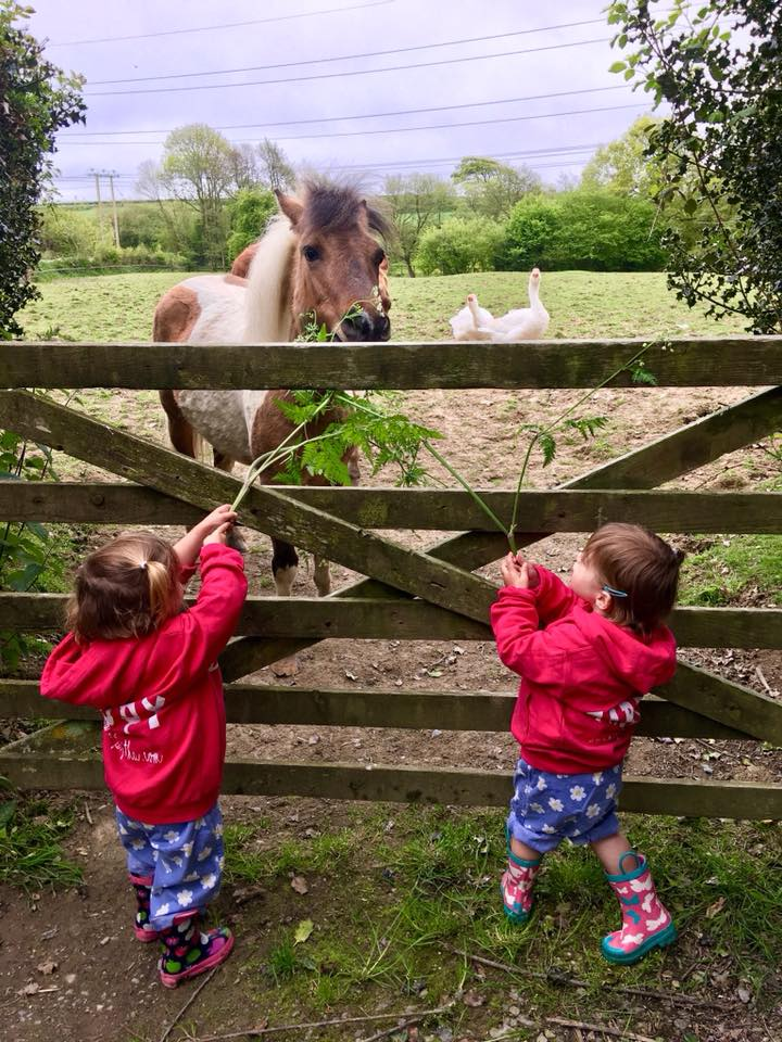 The Popitha Twins are helping feeding the ponies