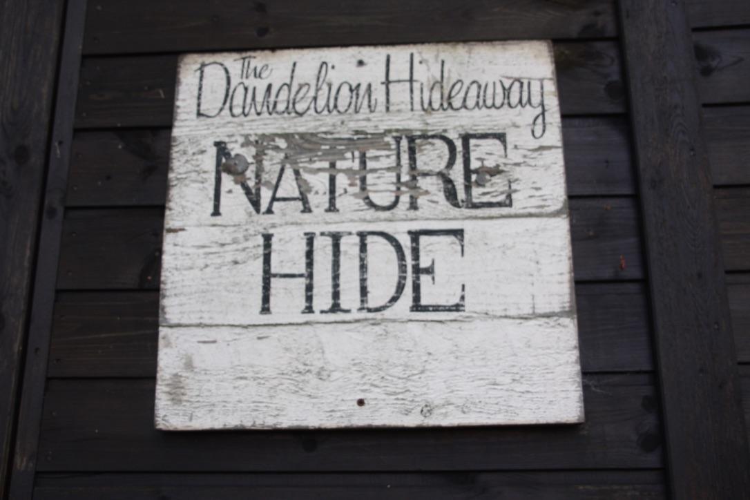 Dandelion Hideaway nature hideDandelion Hideaway nature hide