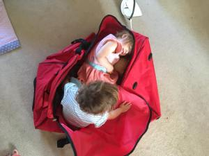 Young toddlers in holiday bags
