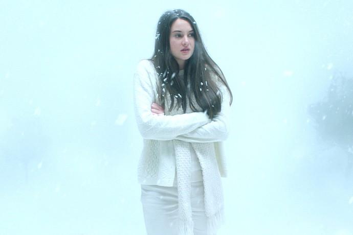Filmbild: Weißer Vogel im Schneesturm